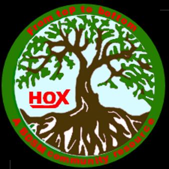 hox_tree